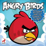Angry Birds (PC DVD)