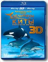 Дельфины и киты Обитатели океана 3D (Blu-ray)