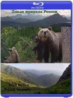 National Geographic Дикая природа России (6 серий) (2 Blu-ray)