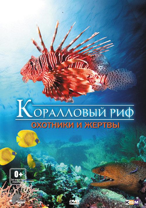 Коралловый риф охотники и жертвы