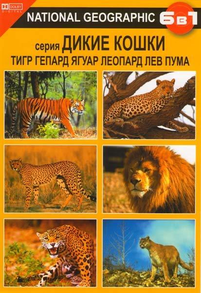 Дикие кошки (Тигр / Гепард / Ягуар / Леопард / Лев / Пума) на DVD