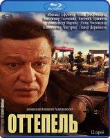 Оттепель (12 серий) (2 Blu-ray)