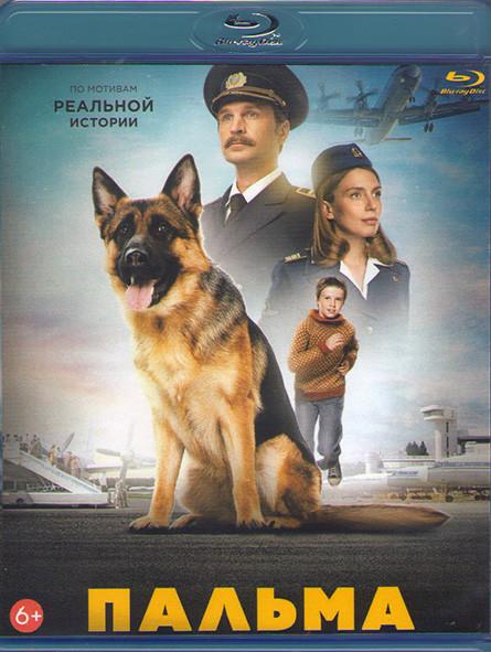 Пальма (Blu-ray)* на Blu-ray