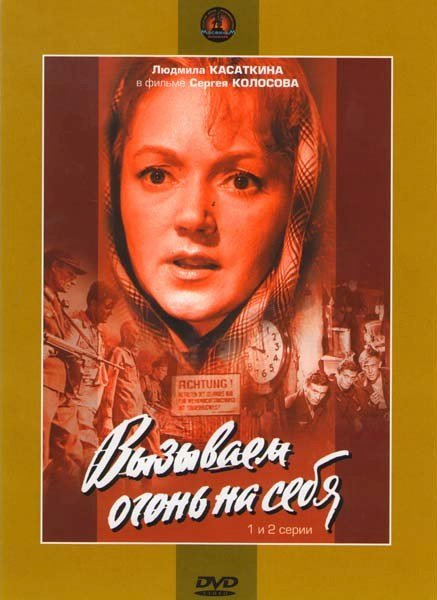 Вызываем огонь на себя (4 серии) (2 DVD) на DVD