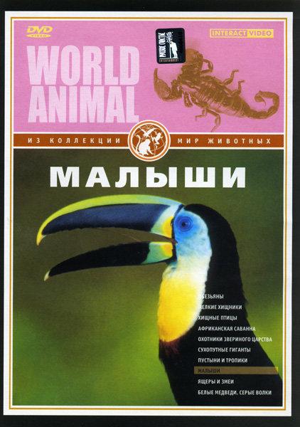 Мир животных: Малыши на DVD
