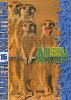 Планета животных 16 (Поместье Сурикат (26 выпусков) / Сурикаты) на DVD