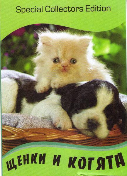 Щенки и котята на DVD