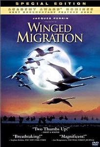 Птицы Странствующий народ на DVD
