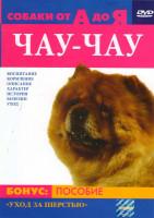 Собаки от А до Я:Чау-Чау