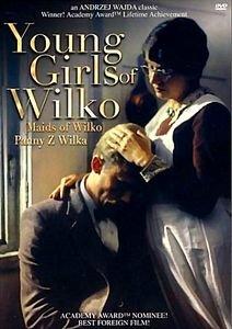 Барышни из Вилько  на DVD
