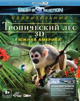 Тропический лес Южная Америка 3D+2D (Blu-ray)