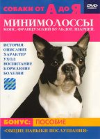 Собаки от А до Я Минимолоссы Мопс Французский бульдог Шарпей