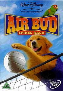 Король воздуха: Возвращение   на DVD