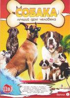 Собака лучший друг человека (Бетховен 1,2,3,4,5 / Бетховен Большой бросок / Рождество с Чилли / Мармадюк / Отель для собак / Белый плен / Феликс лучши