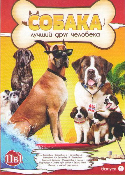 Собака лучший друг человека (Бетховен 1,2,3,4,5 / Бетховен Большой бросок / Рождество с Чилли / Мармадюк / Отель для собак / Белый плен / Феликс лучши на DVD
