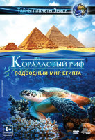 Коралловый риф Подводный мир Египта