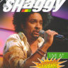 Shaggy Live at Chiemsee Reggae Summer на DVD