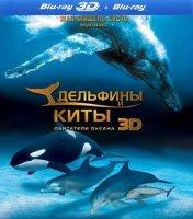 Дельфины и киты Обитатели океана 3D+2D (Blu-ray)