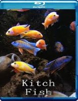 Китч рыбы (Яркие рыбы, Выделяющиеся рыбы) 3D (Blu-ray)