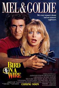 Птичка на проводе на DVD