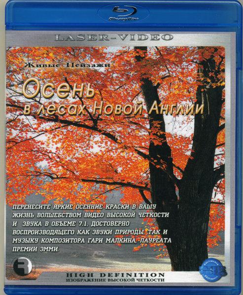 Живые пейзажи Осень в лесах Новой Англии (Blu-ray) на Blu-ray