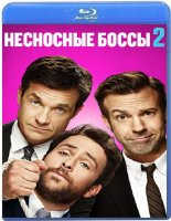 Несносные боссы 2 (Blu-ray)