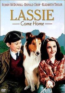 Лесси Возвращается домой на DVD