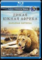 Дикая Южная Африка Большая пятерка 3D+2D (Blu-ray)