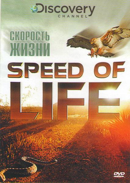 Скорость жизни (3 серии) на DVD