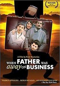 Папа в командировке (2 dvd)   на DVD