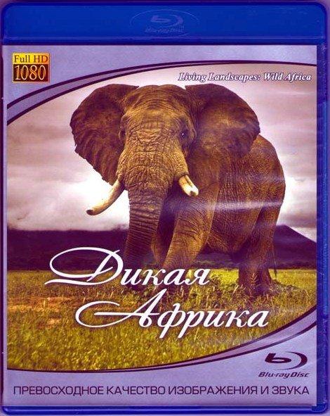 Дикая Африка (Blu-ray)* на Blu-ray