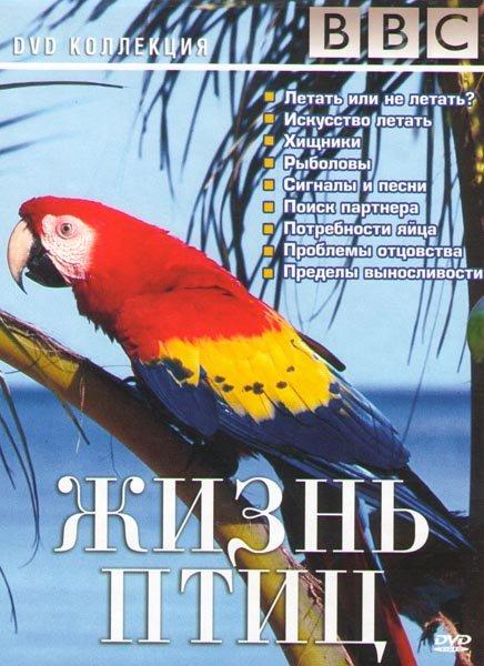 BBC Жизнь птиц 4 Части (Летать или не летать/Искусство летать/Ненасытные/Хищники/Рыболовы/Сигналы и песни/Поиск партнера/Потребности яйца/Проблемы отц на DVD